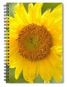 Golden Moment - Sunflower Spiral Notebook