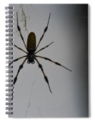 Golden Orb-weaver Spiral Notebook