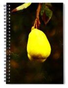 Golden Pear Spiral Notebook