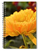 Golden Petals Spiral Notebook
