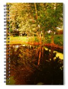 Golden Pond 4 Spiral Notebook