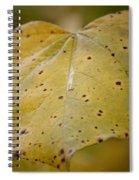 Golden Redbud Heart Spiral Notebook