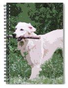 Golden Retreiver Spiral Notebook