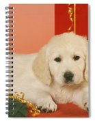 Golden Retriever Amongst Presents Spiral Notebook