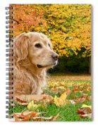Golden Retriever Dog Autumn Day Spiral Notebook