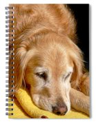 Golden Retriever Dog On The Yellow Blanket Spiral Notebook