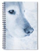 Golden Retriever Dog Snowflakes On My Nose Spiral Notebook