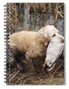 Golden Retriever Dog With Mallard Duck Spiral Notebook