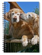 Golden Retriever Dogs The Kiss Spiral Notebook