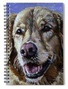 Golden Retriever - Molly Spiral Notebook