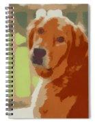 Golden Retriever Profile Spiral Notebook