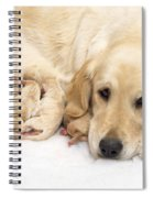 Golden Retriever Puppies Suckling Spiral Notebook