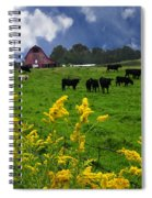 Golden Rod Black Angus Cattle  Spiral Notebook