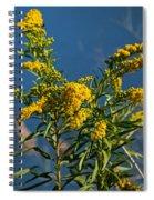 Golden Rods At Northside Park Spiral Notebook