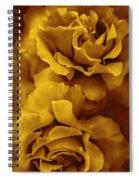 Golden Yellow Roses Spiral Notebook