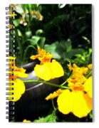 Golden Shower Or Dancing Lady Flower Spiral Notebook