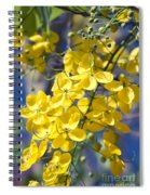 Golden Shower Tree - Cassia Fistula - Kula Maui Hawaii Spiral Notebook