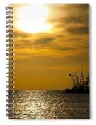 Golden Shrimpers Spiral Notebook