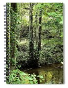 Golden Silence In The Forest Spiral Notebook