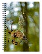 Golden Silk Spider Spiral Notebook