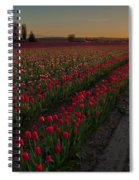 Golden Skagit Tulip Fields Spiral Notebook