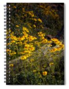 Golden Spring Flowers  Spiral Notebook