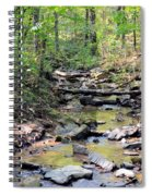 Golden Spring Waters Of Hurricane Branch Spiral Notebook