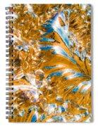 Golden Steel Swirl Spiral Notebook