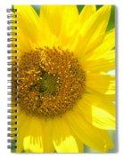 Golden Sunflower - 2013 Spiral Notebook