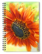 Golden Sunflower Spiral Notebook