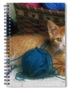 Golden Tabby Kitten Spiral Notebook