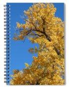 Golden Tree Spiral Notebook