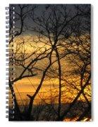 Golden Twilight 2 Spiral Notebook