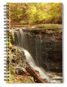 Golden Waterfall October In Ohio Spiral Notebook
