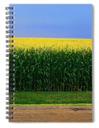 Golden Waves Of Grain Spiral Notebook