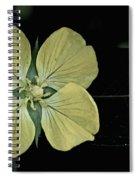 Golden Wild Beauty Spiral Notebook