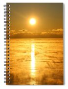 Golden Winter Spiral Notebook