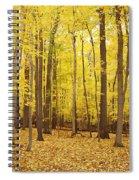 Golden Woods Spiral Notebook