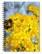 Golden Yarrow And Visitor Spiral Notebook