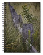 Goldenrod By The Fence Spiral Notebook