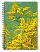 Goldenrod Flowers Spiral Notebook