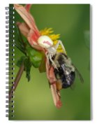 Goldenrod Spider Spiral Notebook