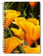 Golden Poppies Spiral Notebook
