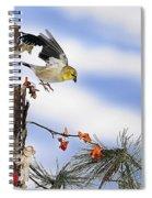 Goldfiches Flying Over Lichen Stump Spiral Notebook
