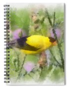 Goldfinch #3 By Kerri Farley Spiral Notebook