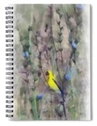 Goldfinch In Wildflowers Spiral Notebook