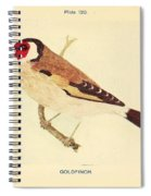 Goldfinch Spiral Notebook