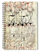 Golgi Olfactory Bulb Of Dog Spiral Notebook