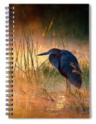 Goliath Heron With Sunrise Over Misty River Spiral Notebook
