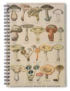 Good And Bad Mushrooms Spiral Notebook